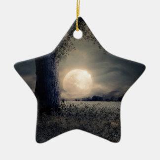 Ornement Étoile En Céramique Paysage de nuit