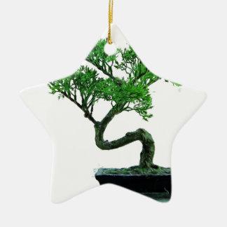 Ornement Étoile En Céramique peinture de bonsaï-arbre