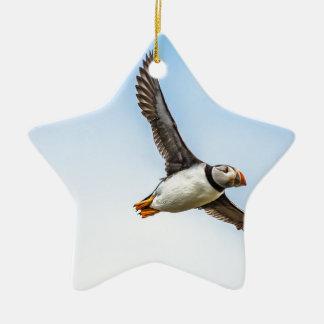 Ornement Étoile En Céramique Plume de mouche de faune de vol de mer d'oiseau de