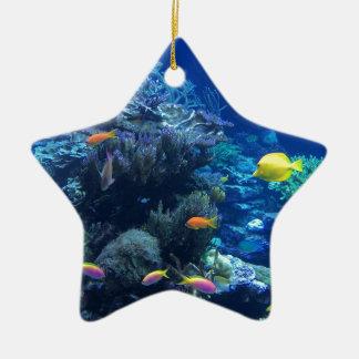 Ornement Étoile En Céramique Poissons sous-marins tropicaux