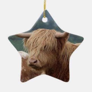 Ornement Étoile En Céramique portrait des bétail des montagnes