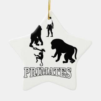 Ornement Étoile En Céramique primats d'ombre