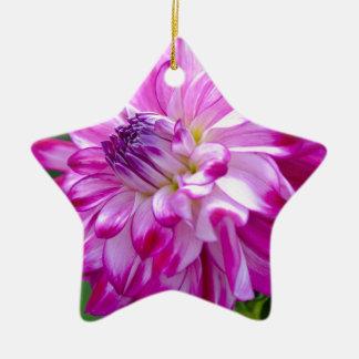 Ornement Étoile En Céramique Prune Flora