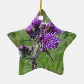 Ornement Étoile En Céramique purple thistle