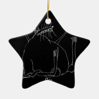 Ornement Étoile En Céramique rat magique