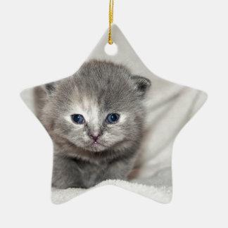 Ornement Étoile En Céramique Regardez ce petit chaton gris