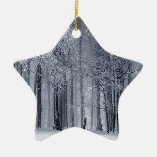 Ornement Étoile En Céramique Scène d'hiver