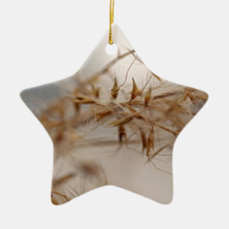 Ornement Étoile En Céramique Secrets dans le vent