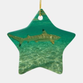 Ornement Étoile En Céramique Shark in bora bora
