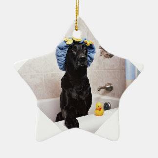 Ornement Étoile En Céramique Temps drôle de Bath de laboratoire de chien noir