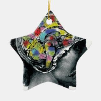 Ornement Étoile En Céramique the brain colors art design