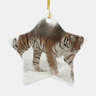 Ornement Étoile En Céramique Tigre-Tigre-double exposition-faune sibérienne