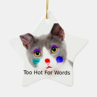 """Ornement Étoile En Céramique """"Trop chaud chat pour mots"""" avec le maquillage de"""