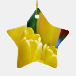Ornement Étoile En Céramique Tulipes jaunes dans le cadre rond coloré