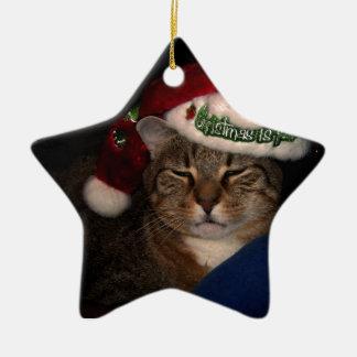 Ornement Étoile En Céramique Un chat habillé pour Noël