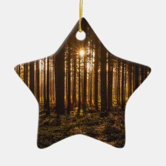 Ornement Étoile En Céramique Vue des arbres noirs et du Sun