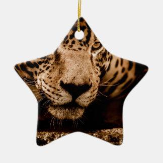 Ornement Étoile En Céramique yeux de égrappage de l'eau de jaguar