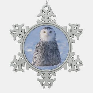 Ornement Flocon De Neige Conception arctique de photo de scène d'hiver de