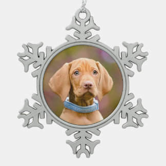Ornement Flocon De Neige Photo puppyeyed mignonne de chiot de chien de
