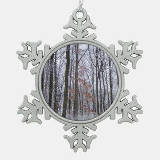 Ornement Flocon De Neige Photographie de paysage d'hiver de forêt