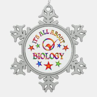 Ornement Flocon De Neige Tout au sujet de la biologie