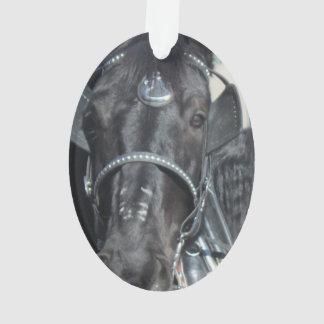 Ornement noir de cheval