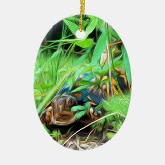 Ornement nord-américain de tortue de boîte