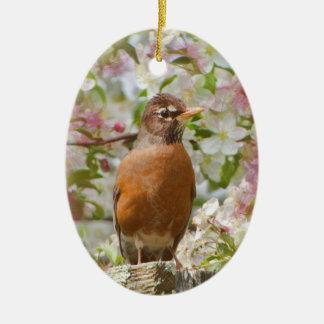 Ornement ovale de Robin au printemps