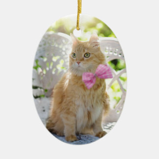 Ornement Ovale En Céramique Animal de compagnie félin de soleil d'été de Kitty