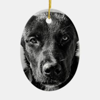 Ornement Ovale En Céramique Animal familier canin de chien