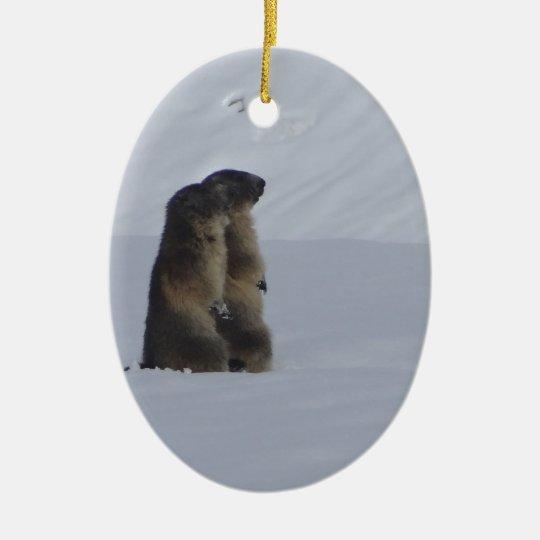 Ornement Ovale En Céramique animaux marmottes sauvage
