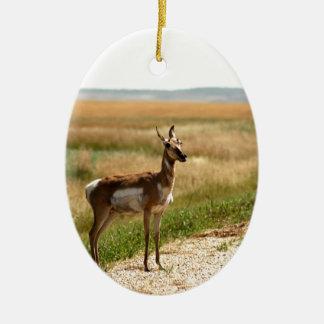 Ornement Ovale En Céramique Antilope de Pronghorn de prairie