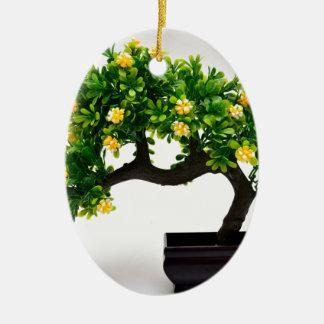 Ornement Ovale En Céramique Arbre de bonsaïs