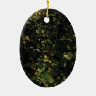 Ornement Ovale En Céramique arbres dans le buisson
