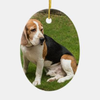 Ornement Ovale En Céramique Beagle