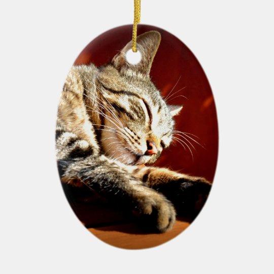 Ornement Ovale En Céramique Beau chat tigré