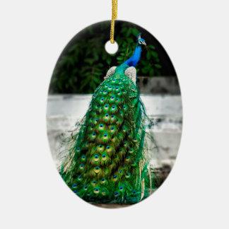 Ornement Ovale En Céramique belles couleurs d'art de plume de paon