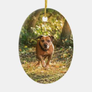 Ornement Ovale En Céramique Bull-terrier du Staffordshire