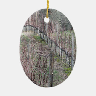 Ornement Ovale En Céramique Champ nu de vignoble en hiver. La Toscane, Italie