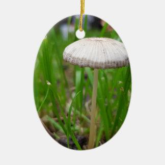 Ornement Ovale En Céramique champignon de bébé