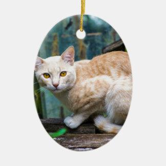 Ornement Ovale En Céramique chat
