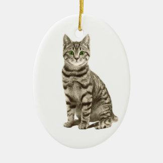 Ornement Ovale En Céramique Chat tigré