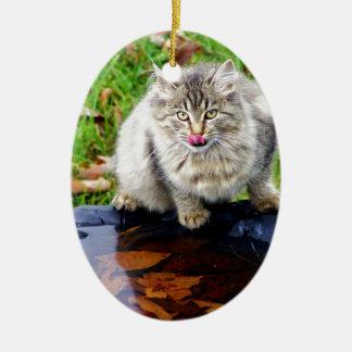 Ornement Ovale En Céramique Chat tigré sauvage avec un regard piercing