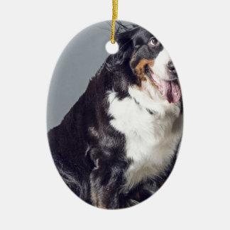 Ornement Ovale En Céramique chien