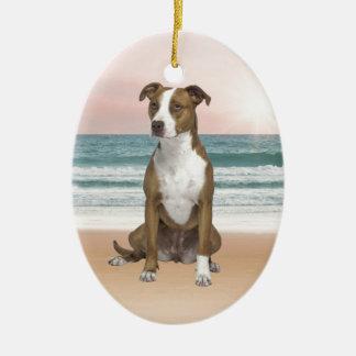 Ornement Ovale En Céramique Chien mignon de Pitbull se reposant sur la plage