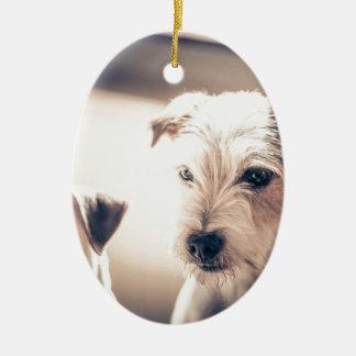 Ornement Ovale En Céramique chiens