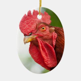 Ornement Ovale En Céramique Coq de rouge d'île de Rhode