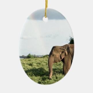 Ornement Ovale En Céramique Éléphant d'IMSri Lankan
