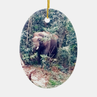 Ornement Ovale En Céramique Éléphant en Thaïlande