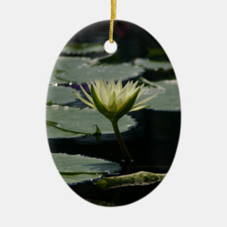 Ornement Ovale En Céramique Fleur jaune pâle de nénuphar de Lotus